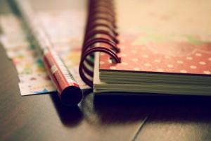 dear_diary_by_plastickheart-d3dnkig